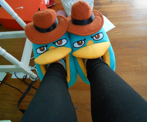 perry, slippers, and shoes image