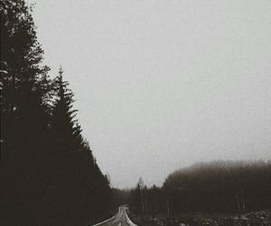 grunge, nature, and road image