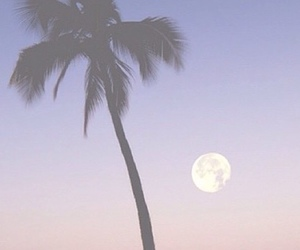 moon, beach, and summer image