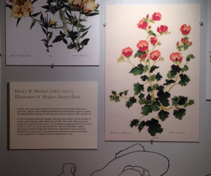 art and flowers image