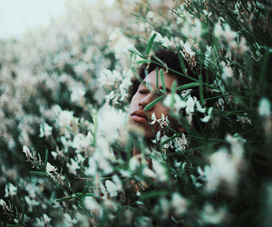 boy, flowers, and photography image