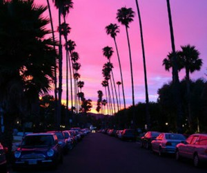 pink, sunset, and car image