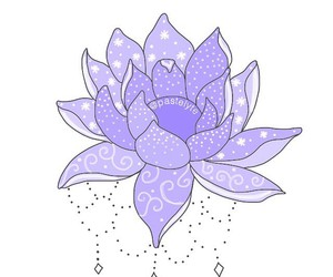 flower, overlay, and purple image