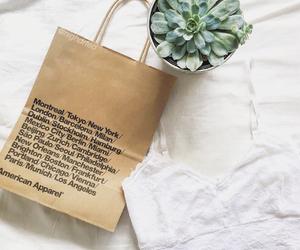 american apparel, bralette, and indie image