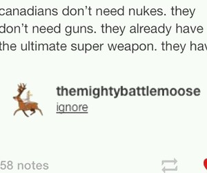 canada, funny, and moose image