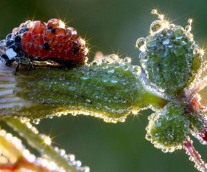 Snapshots Photos | Snapshots Pictures - Yahoo! News