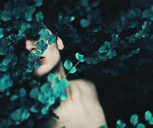 indie, leaves, and nature image