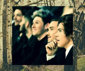 smile, woods, and one direction image