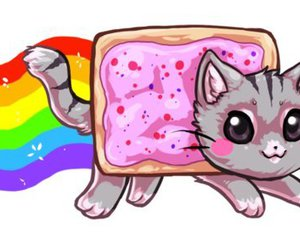 cat, nyan cat, and rainbow image