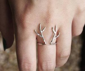deer and ring image