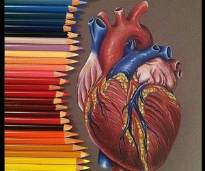 colour, draw, and drawing image