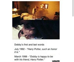 friend, harrypotter, and hp image