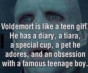 diary, harry potter, and voldemort image