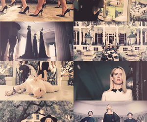 coven and ahs image