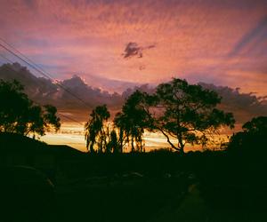 35mm, analog, and sunset image