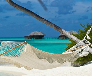 beach, hammock, and sand image