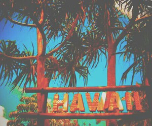 hawaii, summer, and beach image
