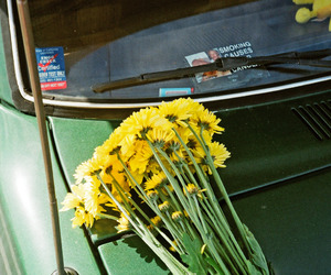 flowers, car, and green image