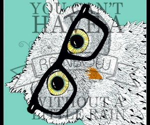 owl and hipster image