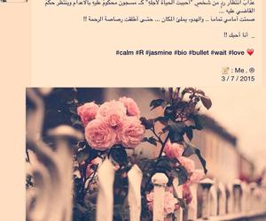 Image by محمد آل ألعبدالله