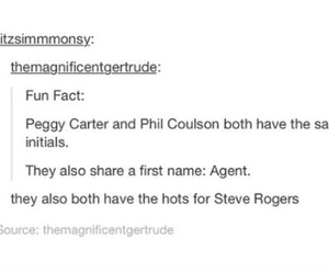 captain america, the avengers, and tumblr post image