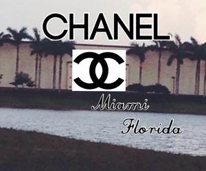 chanel, florida, and Miami image