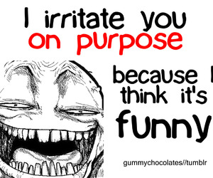 funny, text, and irritate image