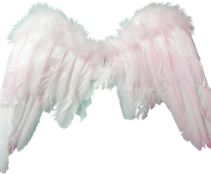 angel, transparent, and pastel colors image