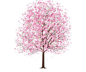 tree, pink, and drawing image