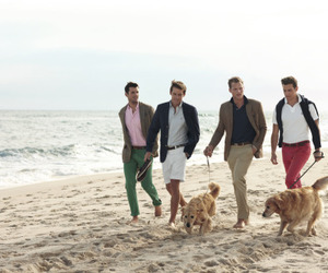 summer, dogs, and fashion image