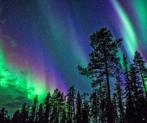 northern lights image