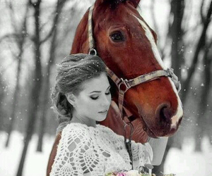 horse, snow, and flowers image