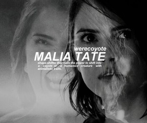 teen wolf, malia tate, and werecoyote image