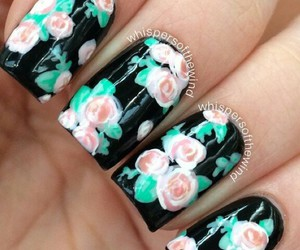 beauty, roses, and black image