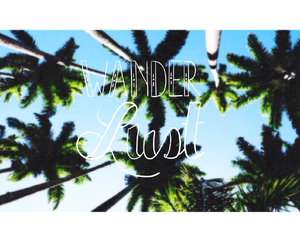 palm trees, summer, and tumblr quality image