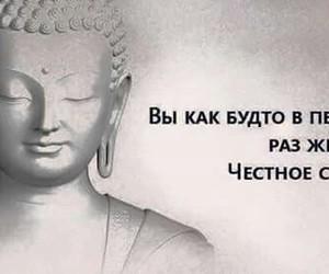 Buddha, funny, and life image