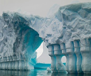 ice, funny, and nature image