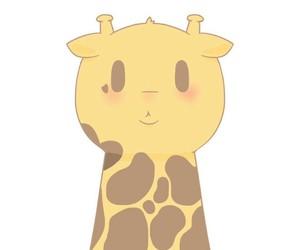 💕, 💞, and wallpaper girafa giraffe image