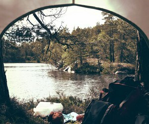 nature, forest, and camping image