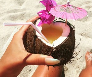 beach, coconut, and food image
