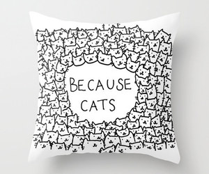 cat, pillow, and cute image