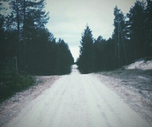 escape, forests, and grunge image