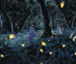 fireflies, girls, and forest image