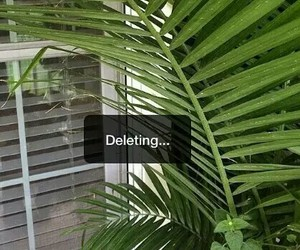 delete, green, and plants image