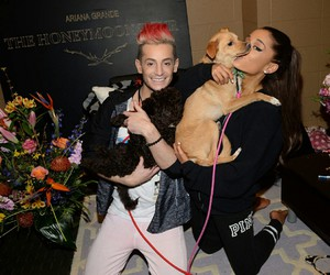 dog, puppy, and arianagrande image