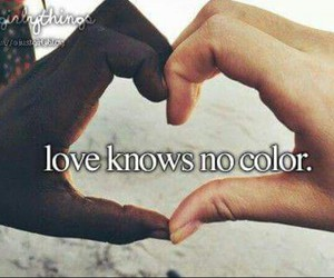 colour, no, and knows image
