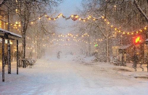 Christmas lights snow street vyer winter inspiring picture