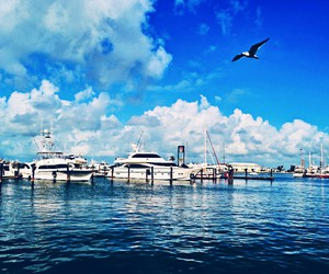 boats, harbor, and key west image