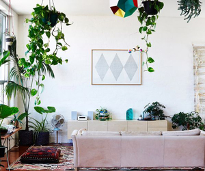 boho, interior design, and minimalism image