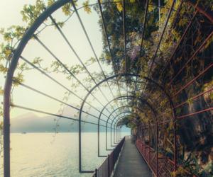 nature, sea, and landscape image